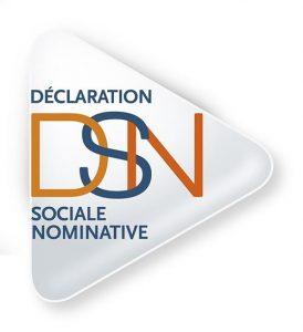 Logo de la DSN